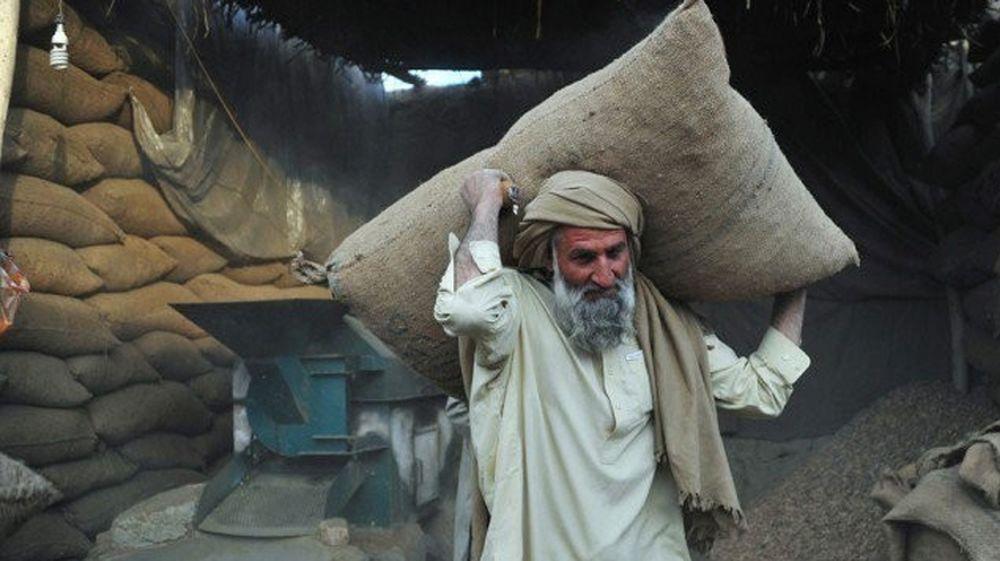 Kashmir Day, Pakistan Day - Labour Day - Eid ul Fitr - Eid ul Azha - Independence Day - Ashura - Eid Milad un Nabi - Quaid e Azam Day - Christmas - parhley - parhley.com - propakistani - pakistani blogger - top pakistani blog